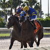 Jackson wins the 2018 Juvenile Sprint Stakes at Gulfstream Park West<br /> Coglianese Photos/Lauren King