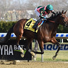 Positive Spirit wins the 2018 Demoiselle Stakes at Aqueduct<br /> Coglianese Photos