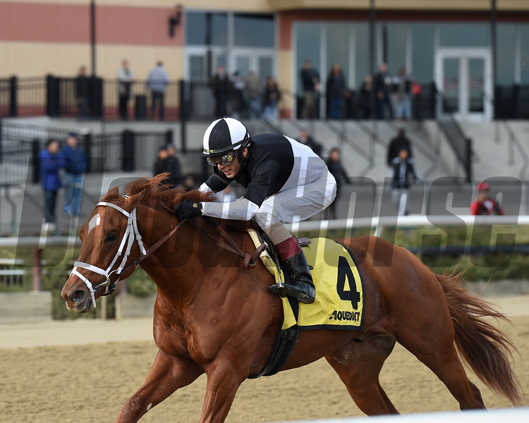 La Fuerza wins the 2018 Notebook Stakes at Aqueduct. Photo: Coglianese Photos/Chelsea Durand