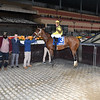 Plainsman, Joel Rosario, Discovery Stakes, $200,000, G3, Aqueduct Racetrack, November 24, 2018