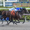 Classic Fit wins the 2018 Hut Hut Stakes at Gulfstream Park.<br /> Coglianese Photos/Leslie Martin