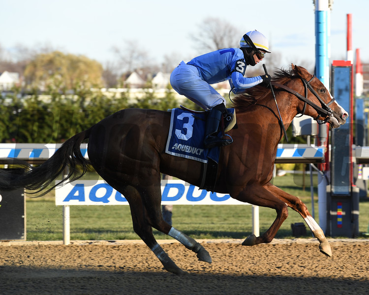 Sassy Agnes wins the 2018 Key Cents Stakes at Aqueduct<br /> Coglianese Photos/Susie Raisher