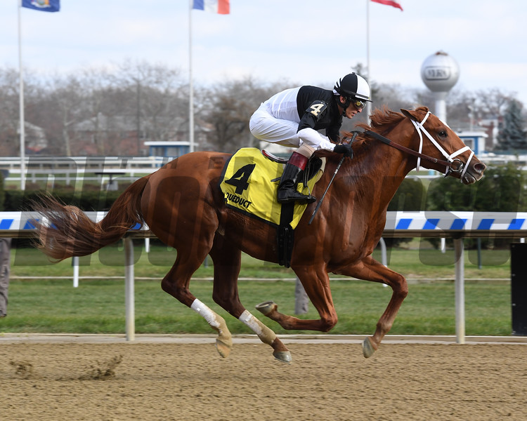 La Fuerza wins the 2018 Notebook Stakes at Aqueduct. Photo: Coglianese Photos/Susie Raisher