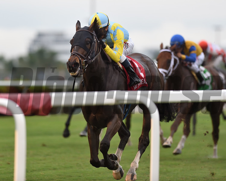 Glorious Empire wins the 2018 Ft. Lauderdale Stakes at Gulfstream Park<br /> Coglianese Photos/Kenny Martin