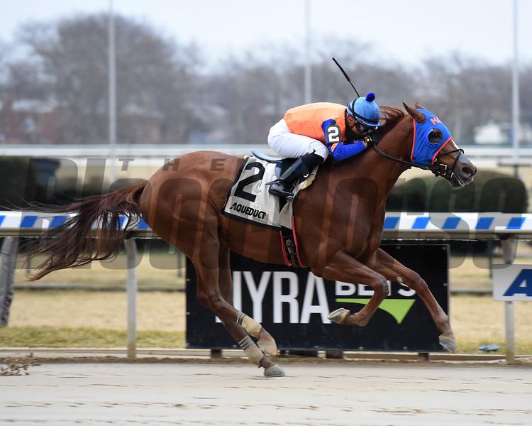 Not That Brady wins the 2018 Damon Runyon Stakes<br /> Coglianese Photos/Susie Raisher
