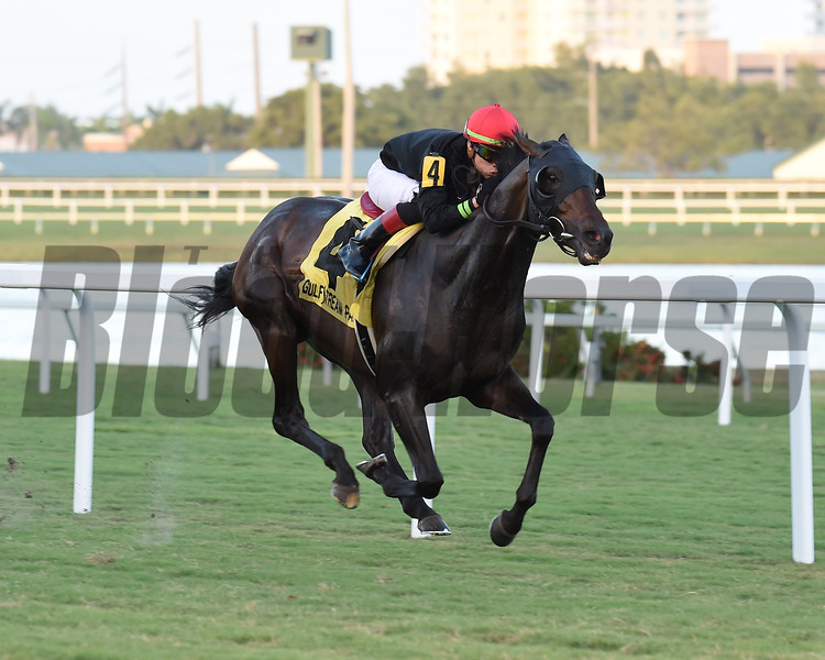 Breaking the Rules wins the 2018 Tropical Park Derby at Gulfstream Park<br /> Coglianese Photos/Lauren King