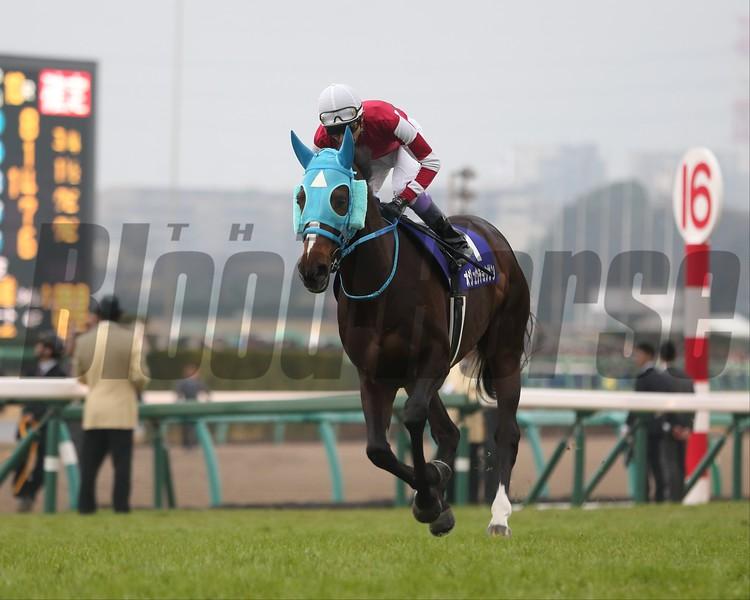 Blast Onepiece (JPN) wins the 2018 Arima Kinen at Nakayama Racecourse. Photo: Masakazu Takahashi