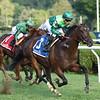 Raging Bull wins the Saranac Stakes at Saratoga Saturday, September 1, 2018. Photo: Coglianese Photos/Chris Rahayel