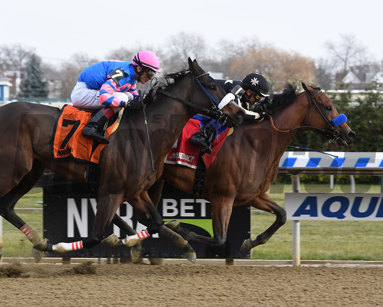 Marley's Freedom wins the 2018 Go for Wand (G3) at Aqueduct<br /> Coglianese Photos/Susie Raisher