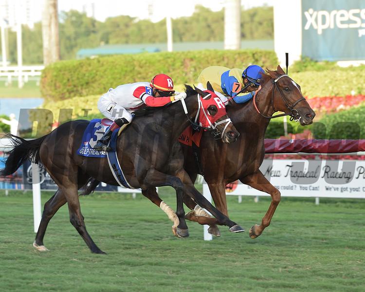Red Knight wins the 2018 H. Allen Jerkens Stakes at Gulfstream Park<br /> Coglianese Photos/Lauren King