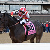 Patternrecognition wins the 2018 Cigar Mile (G1) at Aqueduct<br /> Coglianese Photos/Joe Labozzetta