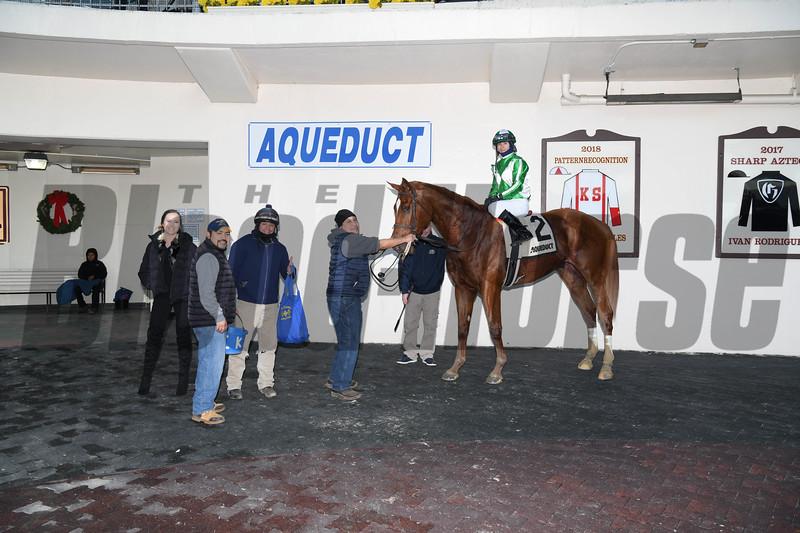 Mr. Buff wins the 2018 Alex M. Robb Stakes at Aqueduct<br /> Coglianese Photos