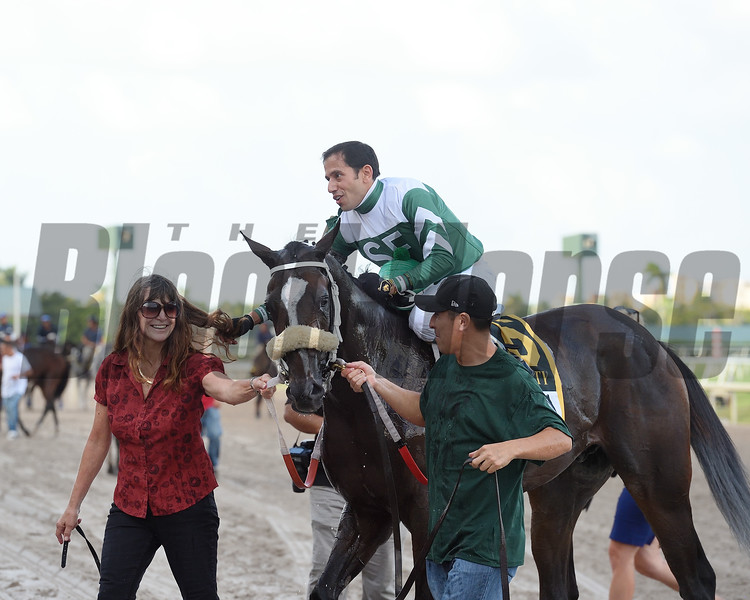 Well Defined wins 2018 FTBOA Florida Sire In Reality Stakes at Gulfstream Park. Photo: Coglianese Photos/Derbe Glass