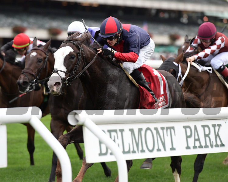 Have At It wins the 2018 Hill Prince Stakes<br /> Coglianese Photos/Joe Labozzetta