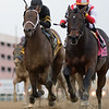 Patternrecognition wins the 2018 Cigar Mile (G1) at Aqueduct<br /> Coglianese Photos