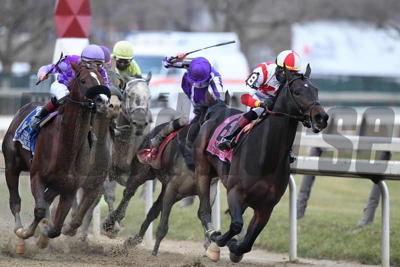 Patternrecognition wins the 2018 Cigar Mile (G1) at Aqueduct<br /> Coglianese Photos/Robert Mauhar