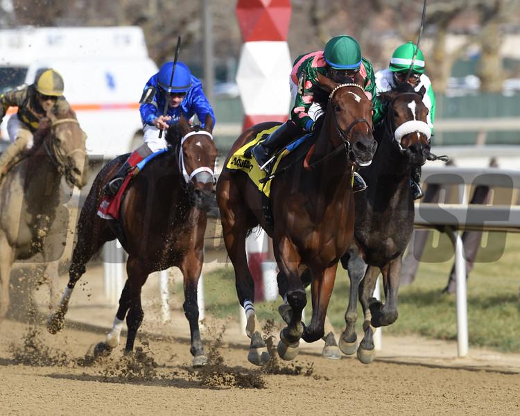 Positive Spirit wins the 2018 Demoiselle Stakes at Aqueduct<br /> Coglianese Photos/Robert Mauhar