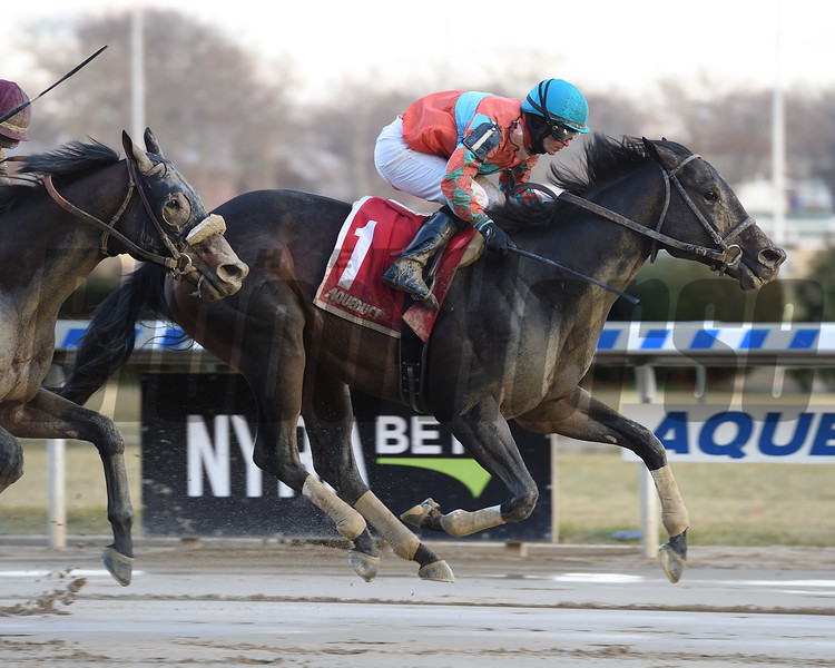 Name Changer wins the Queens County Stakes at Aqueduct Saturday, December 22, 2018. Photo: Coglianese Photos/Susie Raisher