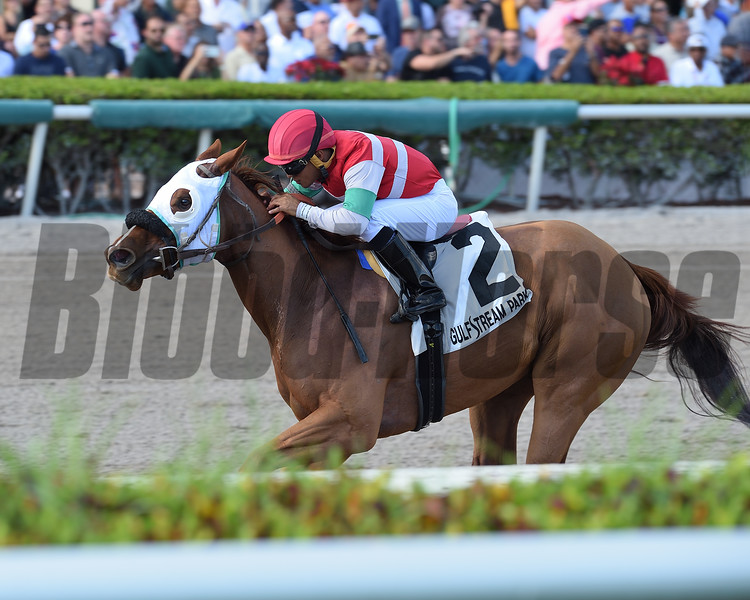 Bye Bye J wins the 2018 House Party Stakes at Gulfstream Park.<br /> Coglianese Photos/Lauren King