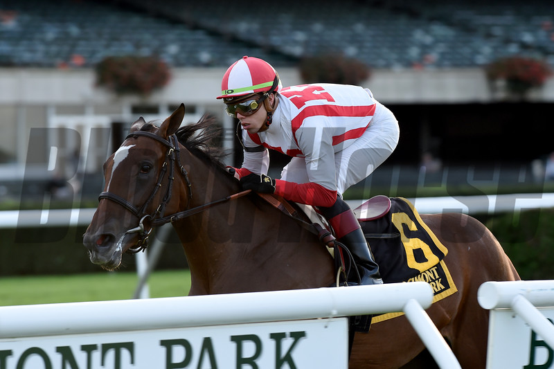 Newspaperofrecord wins 2018 Miss Grillo Stakes at Belmont Park. Coglianese Photos/Chelsea Durand