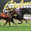 Blacktype wins the 2018 Knickerbocker Stakes<br /> Coglianese Photos