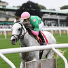 Disco Partner wins the 2018 Belmont Turf Sprint Invitational<br /> Conglianese Photos/Joe Labozzetta