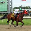 Aztec Sense Pa Derby Champion Stakes Parx Chad B. Harmon