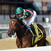 Positive Spirit wins the 2018 Demoiselle Stakes at Aqueduct<br /> Coglianese Photos/Chelsea Durand