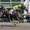 Appealing Future wins the 2018 Claiming Crown Express at Gulfstream Park<br /> Coglianese Photos/Lauren King