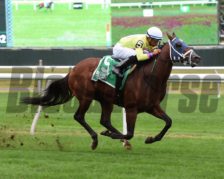 World of Trouble wins the 2018 Allied Forces Stakes<br /> Coglianese Photos/Susie Raisher