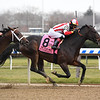 Patternrecognition wins the 2018 Cigar Mile (G1) at Aqueduct<br /> Coglianese Photos/Susie Raisher