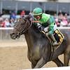 Wow Cat wins the 2018 Beldame Stakes<br /> Coglianese Photos/Annette Jasko