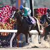 Japan Breeding Farms' Cup; Kyoto Racecourse; K T Brave (JPN); JBC Classic; G1; November 4; 2018