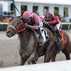 Misschief Maas wins the 2018 Claiming Crown Glass Slipper at Gulfstream Park<br /> Coglianese Photos/Kenny Martin