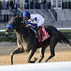 Backtohisroots wins the 2018 Atlantic Beach Stakes<br /> Coglianese Photos/Joe Labozzetta