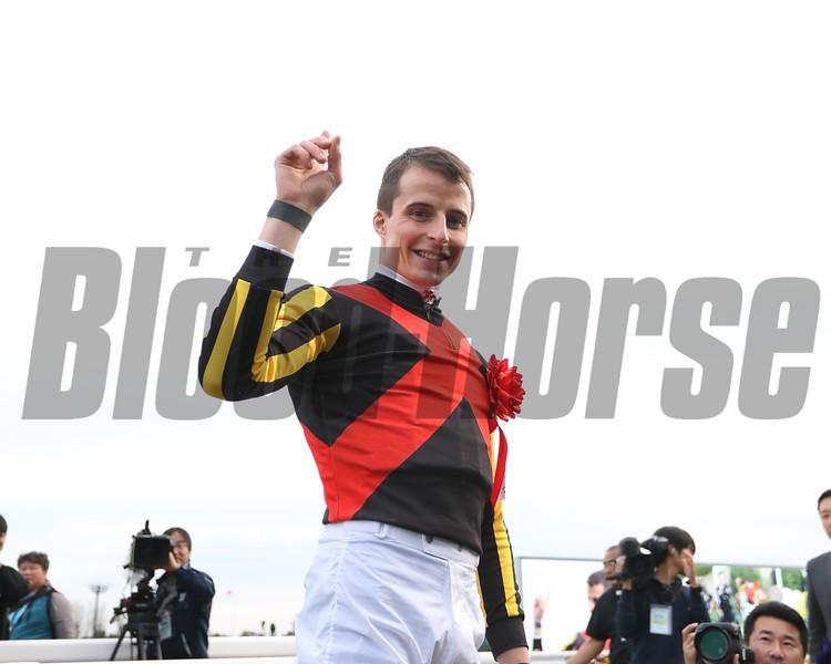 Stelvio, William Buick, Mile Championship, G1, Kyoto Racecourse, November 18, 2018