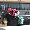 Forgotten Hero wins the 2018 New York Stallion Series Fifth Avenue Division at Aqueduct<br /> Coglianese Photos/Elsa Lorieul
