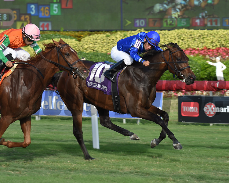 Too Charming wins the 2018 Tropical Park Oaks at Gulfstream Park<br /> Coglianese Photos/Lauren King