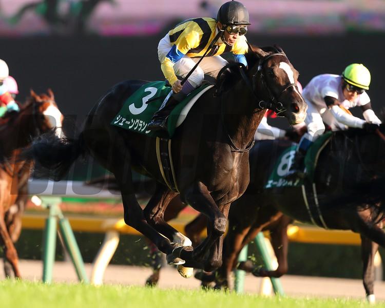 Schon Glanz, Yutaka Take, Artemis Stakes; G3; Tokyo Racecourse; October 28; 2018