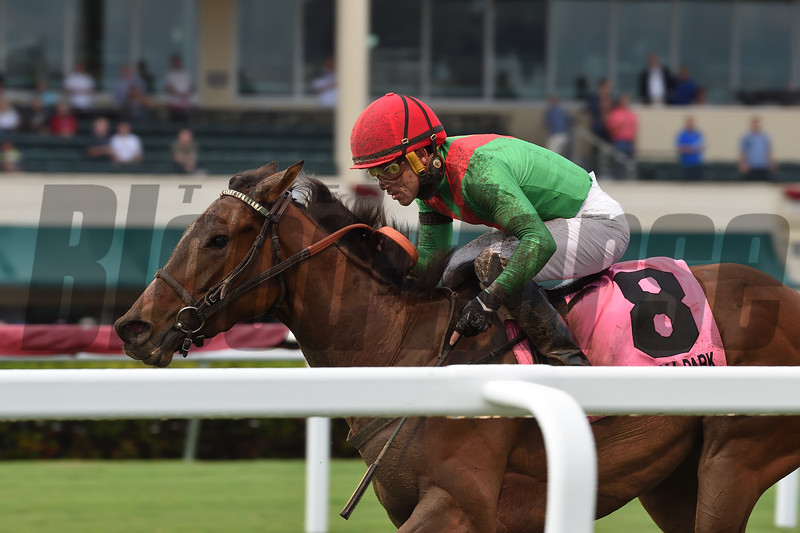 Capla Temptress wins the 2018 My Charmer Stakes at Gulfstream Park<br /> Coglianese Photos/Lauren King