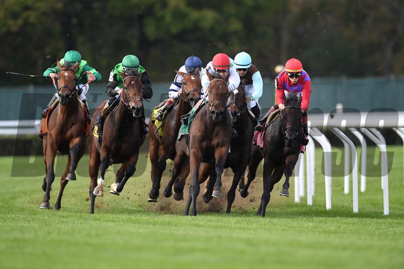 Fifty Five wins the 2018 Ticonderoga Stakes<br /> Coglianese Photos/Robert Mauhar