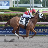 Bye Bye J wins the 2018 House Party Stakes at Gulfstream Park.<br /> Coglianese Photos/Leslie Martin
