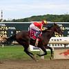 McKinzie Pennsylvania Derby Parx Chad B. Harmon