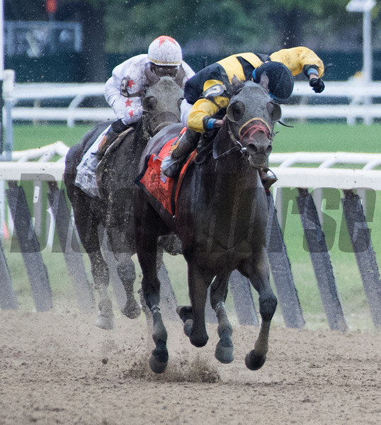 Discreet Lover with Manny Franco wins the 100th running of The Jockey Club Gold Cup at Belmont Park Saturday Sept. 29, 2018 in Elmont, N.Y.  Photo by Skip Dickstein