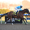 Blamed wins the 2018 Comely Stakes at Aqueduct<br /> Coglianese Photos/Elsa Lorieul