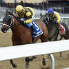 Plainsman wins the 2018 Discovery Stakes at Aqueduct<br /> Coglianese Photos/Chelsea Durand