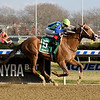 Vertical Oak wins the 2018 Garland of Roses Stakes at Aqueduct<br /> Coglianese Photos/Susie Raisher