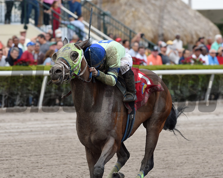 Uno Mas Modelo wins the 2018 Claiming Crown Rapid Transit <br /> Coglianese Photos/Kenny Martin