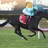 Rymska wins 2018 Athenia Stakes at Belmont Park. Photo: Coglianese Photos