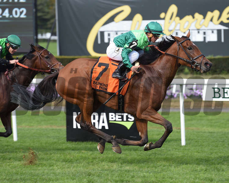 Fifty Five, Javier Castellano, Ticonderoga Stakes, $200,000, Belmont Park, October 20, 2018<br /> Coglianese Photos